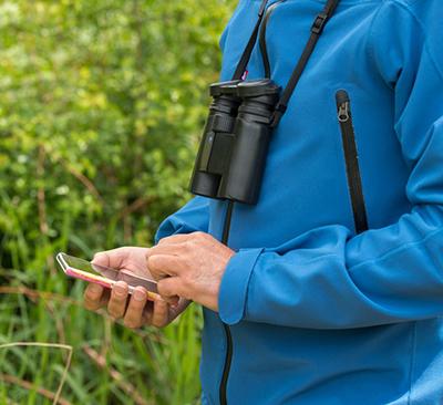 Vrijwilliger geeft waarneming door met smartphone (Photo: Lars Soerink / Vilda)